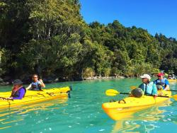 New Zealand Sea Kayaking Okarito Lagoon
